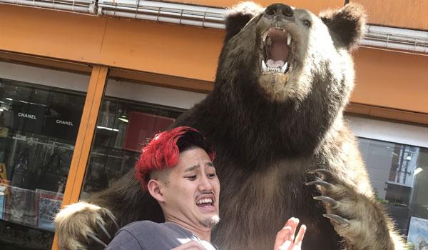 【マルとクマ,】